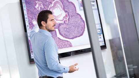 Philips expands its Digital Pathology Solutions portfolio with the acquisition of PathXL
